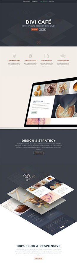 Preview Divi Cafe Case Study